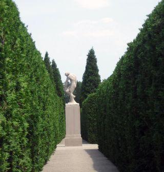 RodinsAdam